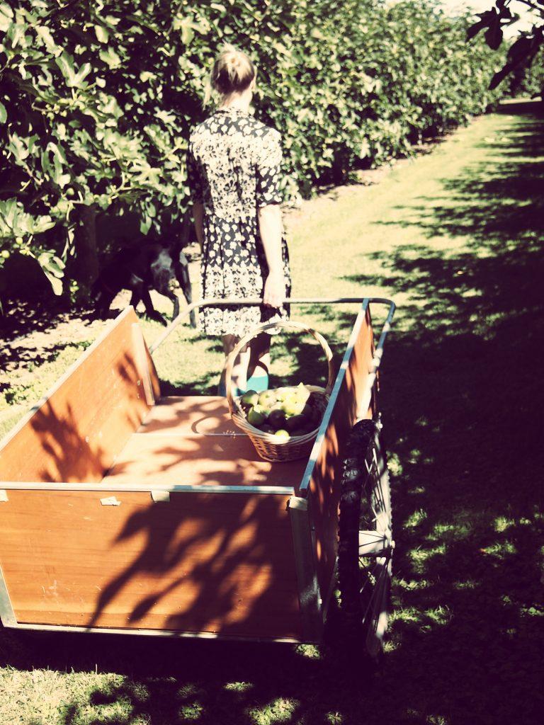 Emily Hope pulling cart